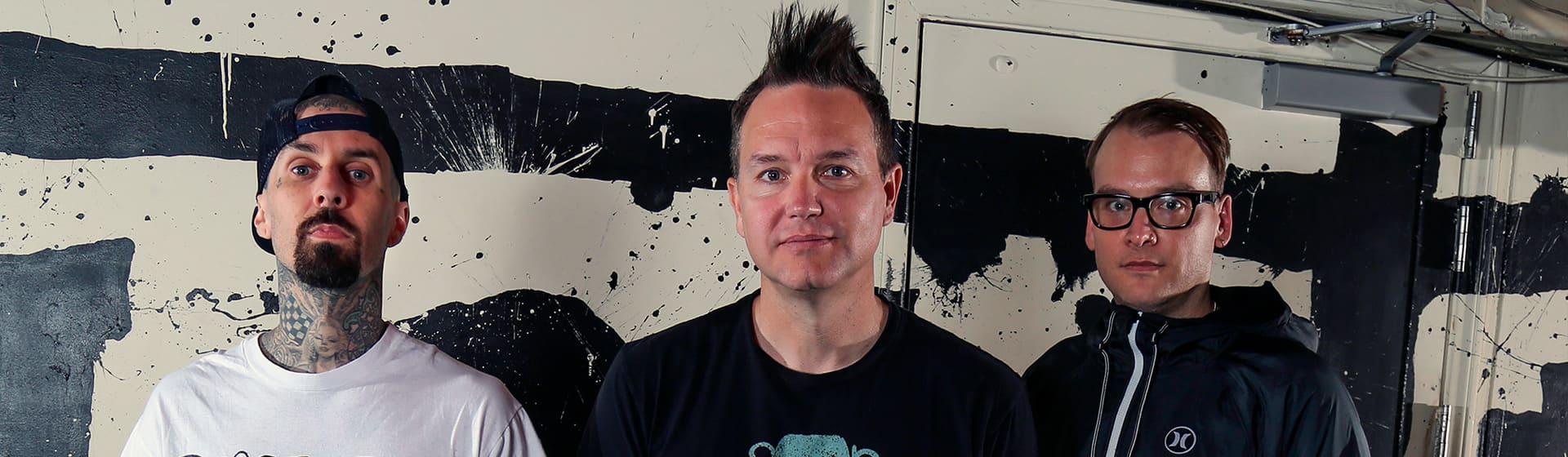 Blink-182 - Женские свитшоты