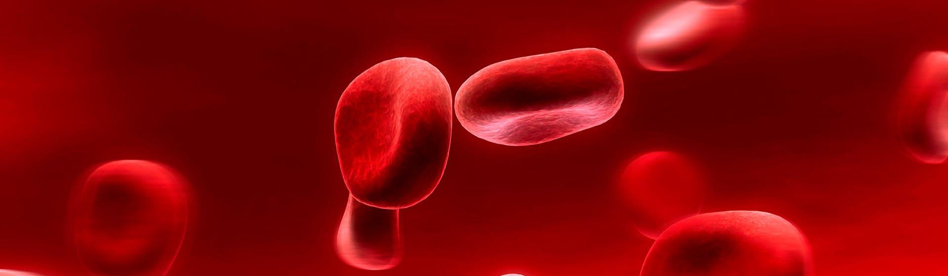 Группы крови - Мерч и одежда с атрибутикой