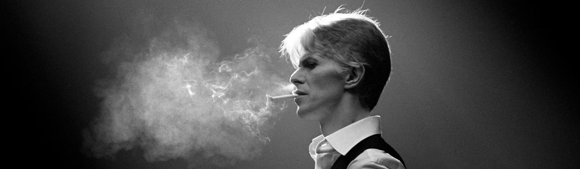 David Bowie - Женские толстовки